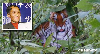 """周正龙[其人其事]拍摄""""华南虎""""照片系用老虎"""