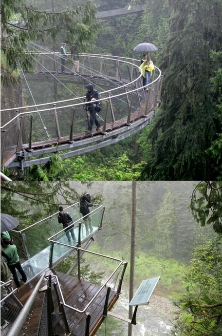 这座吊桥依附峭壁而建,还设有玻璃观景台