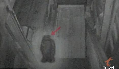 """超自然现象调查员曾在酒吧里抓拍到""""幽灵""""的照片"""