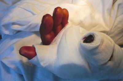 手指动物影子图片