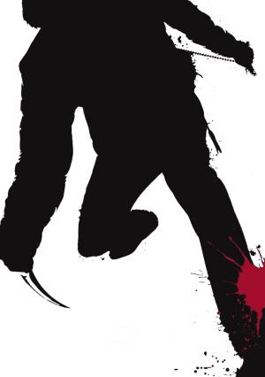 忍者刺客男主角