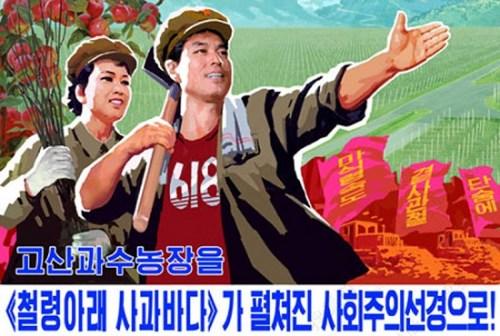 """朝鲜""""小清新""""宣传片走红 致力打造柔和身段"""
