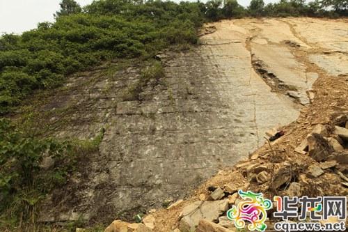 发现恐龙足迹的岩壁。罗晓韵 摄 华龙网发