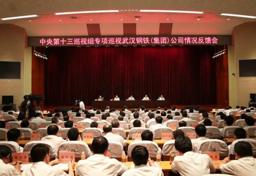 中央第十三巡视组向武汉钢铁(集团)公司反馈巡视情况