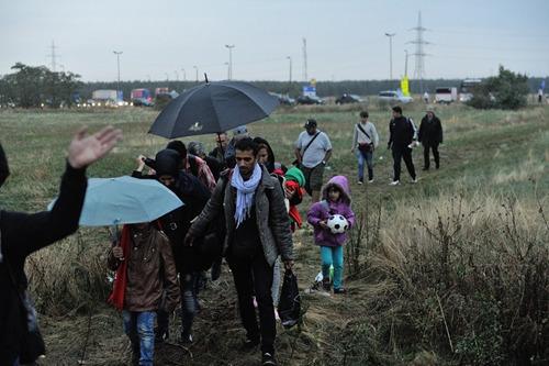 大批入境欧洲的难民。(图片来源:联合国网站)