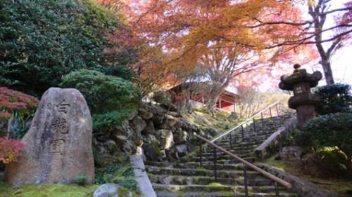 京都,就是其中的极好代表。