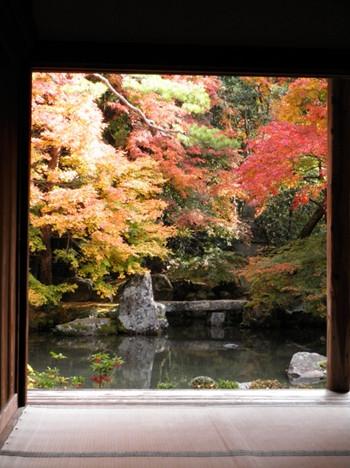 可以在欣赏历史遗迹的同时,尽情领略极富禅意的红叶美景。