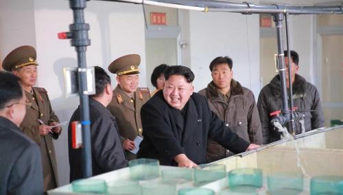 金正恩视察朝鲜三泉鲇鱼厂 指示加强物质技术基础