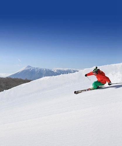 外国滑雪游客在日状况不断 12名受困者获救(图)