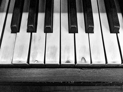 赵四小姐的象牙钢琴