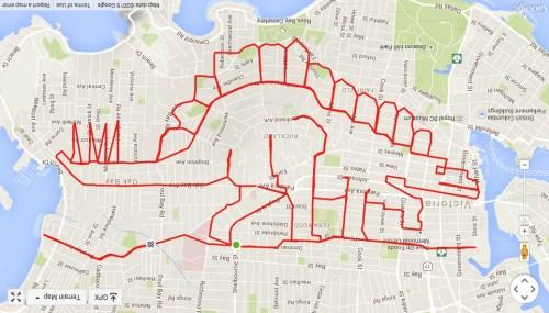"""自行车变画笔 艺术家用GPS穿梭城市""""作画""""(组图)"""