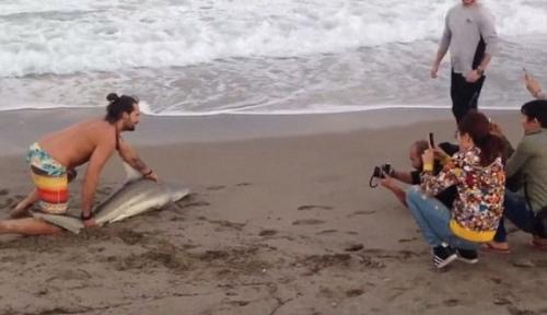 男子一手按住鲨鱼头,一手按住鲨鱼尾,让游人拍照