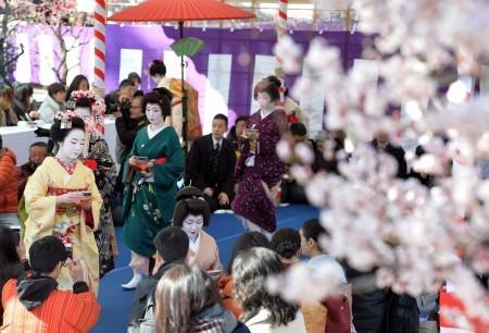 """京都北野天满宫举办""""梅花祭"""" 游人如织(图)"""