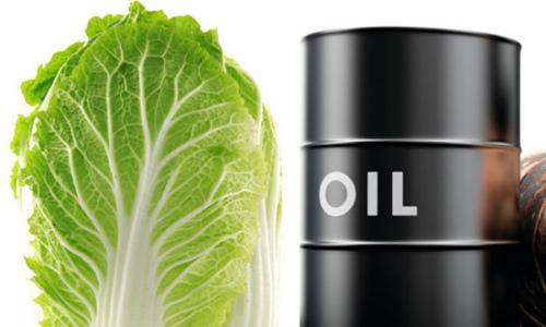 国际油价持续低迷,让部分产油国倍感压力。