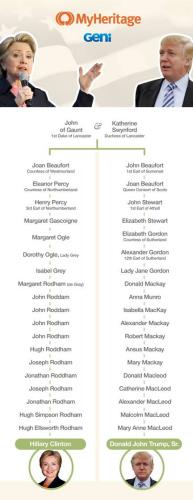希拉里和特朗普的族譜。