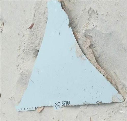 莫桑比克发现的疑似飞机残骸。