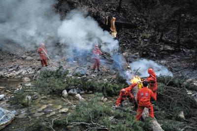 3月10日,甘肃迭部县达拉林场,扑火队发觉一棵大树的外部着火,企图将树干锯断,再将树干中的明火点燃。