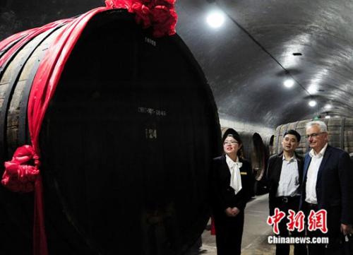 """奥兰德老师在张裕百年地下大酒窖,观光有""""亚洲桶王""""之称的宏大橡木桶"""