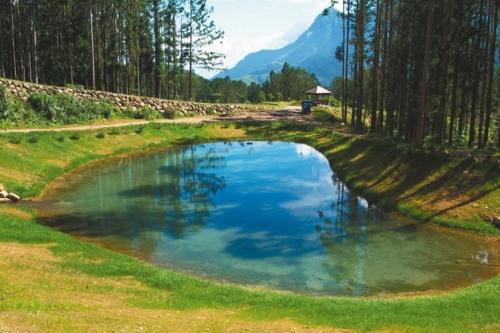 大学池、月牙湾(图)都是溪头著名景点。 台大实验林提图