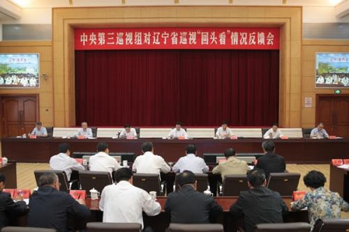 """地方第三巡查组向辽宁省反应巡查""""转头看""""状况。图像来历:中心纪委督查部网站"""