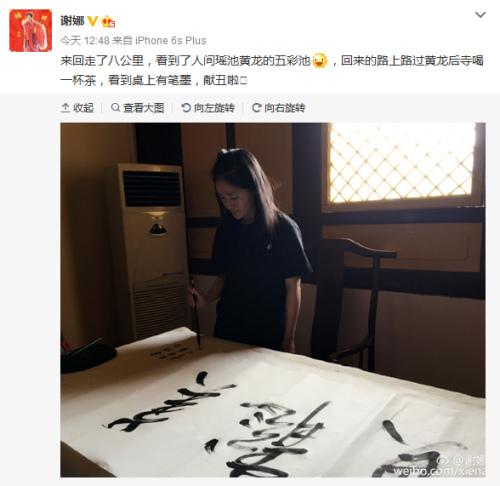 Xie Na swipes ink users write characters: the word beauty, more beautiful (Figure)