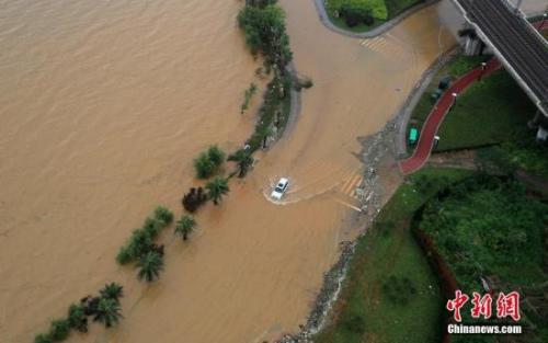 7月4日,受强降雨影响,江西九江八里湖水位不断上涨,致使部分沿湖道路被淹。中新社发 刘家 摄