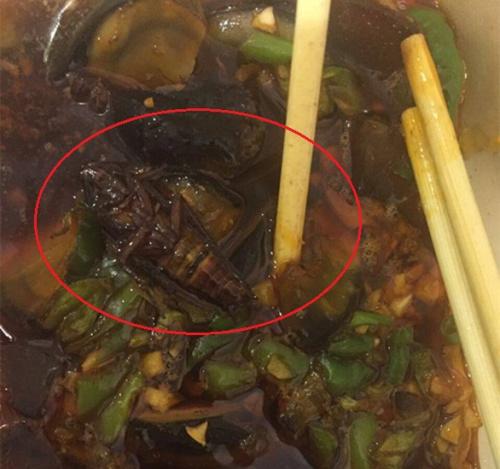 刘女士在外卖里吃出了蟑螂。来源:受访者供图。