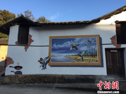 庆元县黄田镇黄坞村3D墙绘 庆元县委宣传部提供 摄