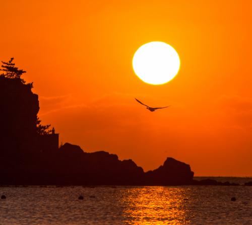 《海的遐想》 地点:山东青岛 摄影:王庆禄