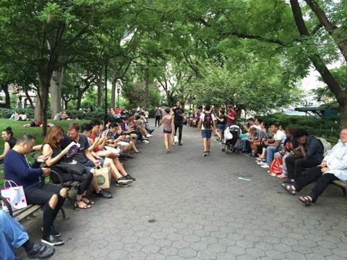纽约中心公园汇集了多量游戏玩家。(美国《国际日报》/洪群超 摄)