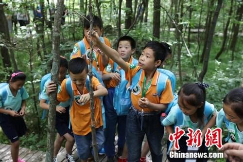 孩子参加户外活动