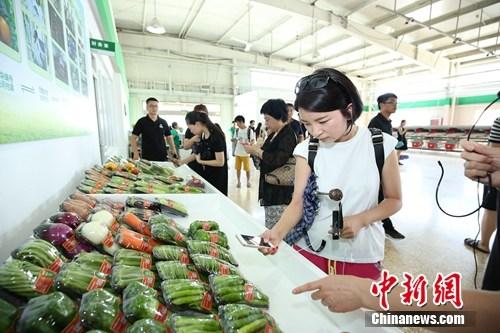 现场扫描二维码,体会蔬菜全程可溯源。