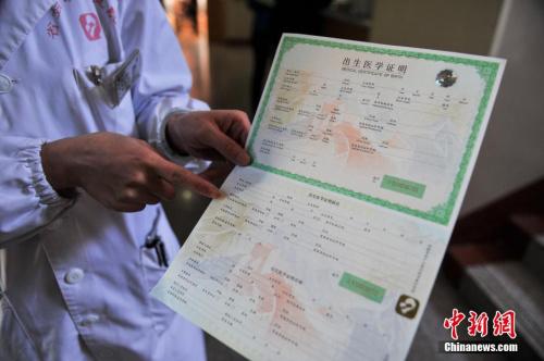 资料图。<a target='_blank' href='http://www.chinanews.com/'>中新社</a>发 任东 摄