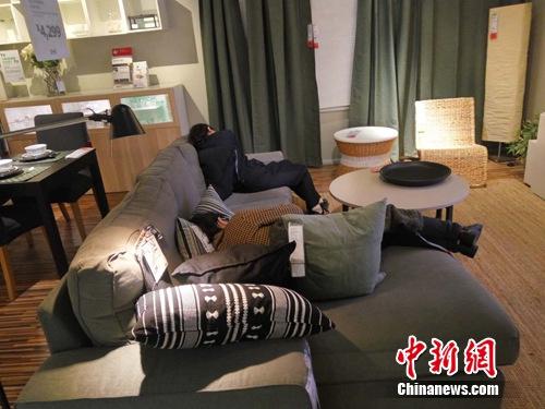"""图为好家""""蹭睡族""""。吕春荣 摄"""