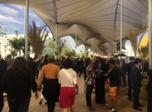 马拉喀拉气候大会现场。中新社俞岚 摄。
