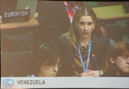 委内瑞拉美女谈判代表克劳迪娅・萨勒诺在气候谈判全会上发言。中新社周锐 摄。