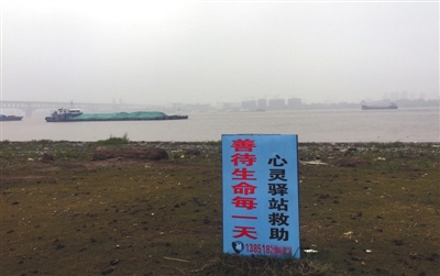 11月20日,南京。长江岸边,一块蓝色的标牌上写着陈思的电话号码。A16-A17版摄影/新京报记者 王佳慧