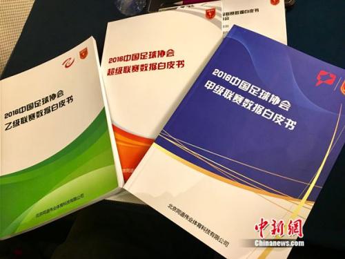 白皮书款式,中新网记者王牧青摄