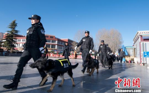 西藏警犬首次参与街面巡逻执勤