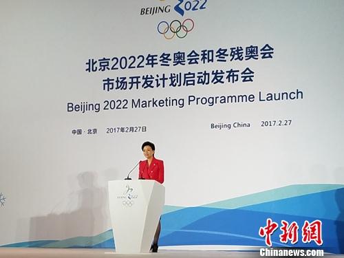 杨澜主持冬奥会和冬残奥会市场开发计划启动发布会