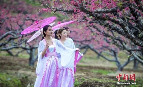 资料图:广东大学生扮演古人穿越,呼吁重视古诗词。中新社记者 钟欣 摄
