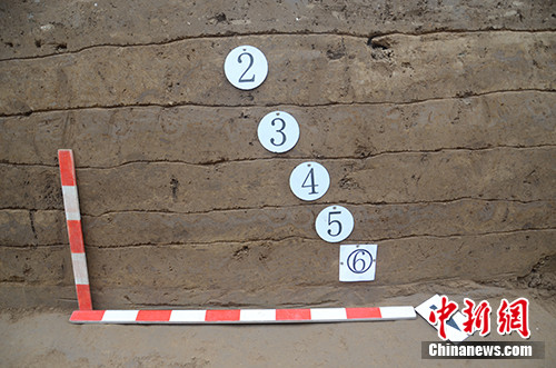 南城墙南侧剖面夯层。主办方供图