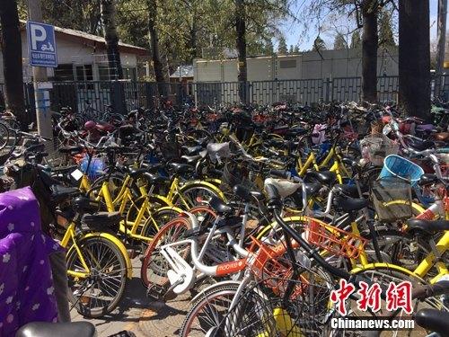 资料图:颐和园附近的一处停车点堆满共享单车。 吴涛 摄