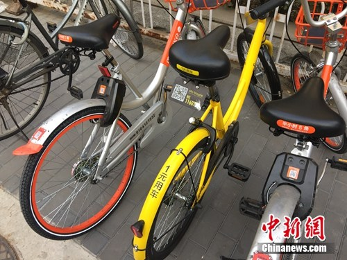 资料图。某辆共享单车号码被损。 吴涛 摄