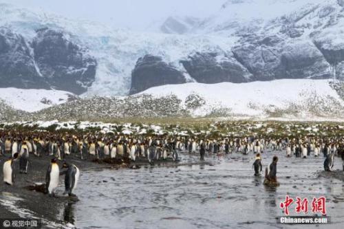 资料图:南极