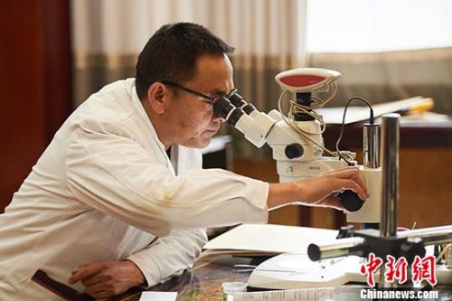 """西藏4500多种药材有了""""身份证"""""""