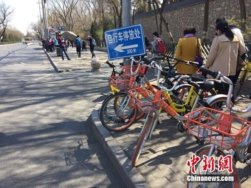 共享单车越来越多,出现在大街小巷。<a target='_blank' href='http://www.chinanews.com/' >中新网</a> 吴涛 摄