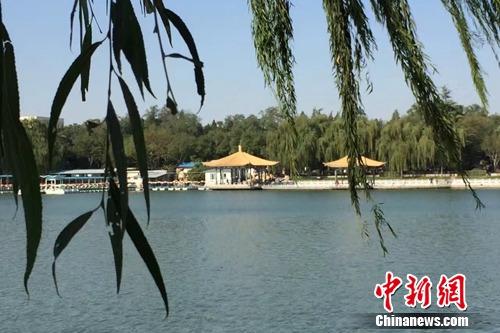 今年4月,北京陶然亭公园内春意盎然。<a target='_blank' href='http://www.chinanews.com/' >中新网</a> 种卿 摄
