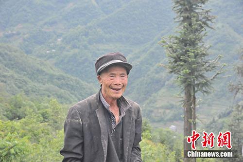 正在种地的村民郑传贵。中新网记者 宋宇晟 摄
