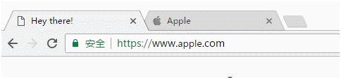 地址栏的显示是apple.com,肉眼根本无法识别出这是假冒产品。只有将真假网址对比来看,才能发现假网址的字母(使用西里尔语里的a,比英文的a看起来略小)